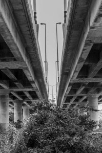 Between THe Flyover 2