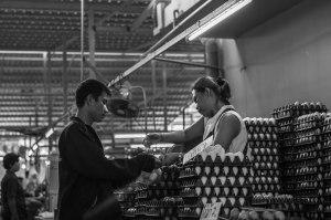 Buying Eggs