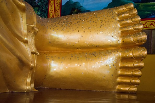 Feet of Buddha 1