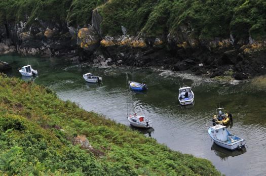 Gorge Boats
