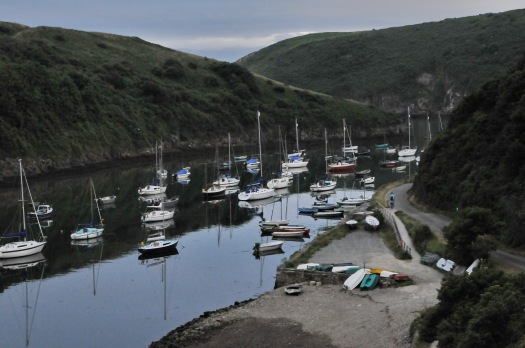 Solva Harbour 1