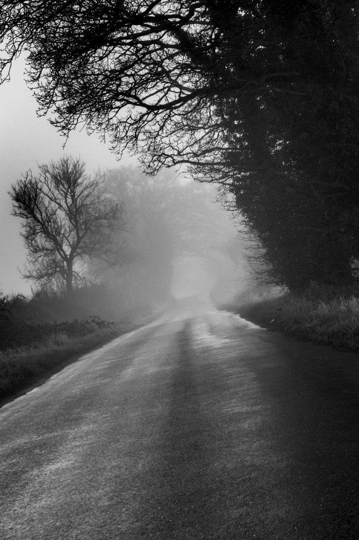Road through the Fog